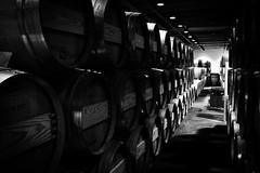Barrels II (mgschiavon) Tags: wine madebyhumans indoors california blackandwhite blackwhite bw patterns dark