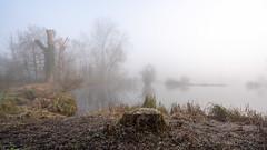 Stockers Lake Mist (d:w) Tags: rickmansworth a7riii uknature aqadrome mist fog 2019 hertfordshire february