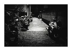 人の行く裏に道あり (gol-G) Tags: fujifilm xpro2 fujifilmxpro2 nokton 35mm f12 voigtlandernokton35mmf12aspherical digital bw japan kobe
