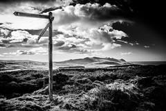 Carmel (lowribearmanphotography) Tags: carmel cilgwyn eifls landscape mountains northwales sunny yreifl bw monochrome clouds moody cymru wales