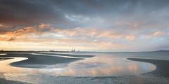 Watching Sunset (Kevin.Grace) Tags: ireland dublin bay sandymount reflection sunset bird sky landscape seascape poolbeg chimneys skyline clouds