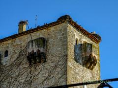 Torreón de los Condes de Puñonrostro, Valdeprados, Segovia. (Airbeluga) Tags: paisajes segovia nature naturaleza delarisca castillaleón senderismo españa sendcerrocaloco