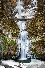 Multnomah Falls (Gary Grossman) Tags: multnomah falls waterfall cascades columbia river oregon landscape winter snow ice icicles moss ferns northwest garygrossman garygrossmanphotography landscapephotography columbiagorgenationalscenicarea pacificnorthwest wintermorning