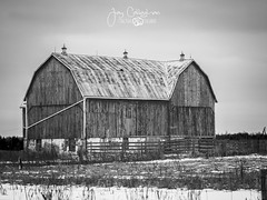 Barn (CalTek Design) Tags: barn winter farm farming structure outdoors landscape landscapephotography red snow ontario rural country