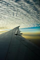 Sunset - Qatar airways Boeing 787-8 (Michele Centurelli) Tags: qatar airways boeing 787 7878 wing winglet sunset tramonto sky nature cielo clouds nikon d7200 18105