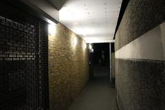 Night Shoot, 94 (doojohn701) Tags: alleyway passage walls lights dusk dark night white shop windows brickwork stripe grille flourescent village uk