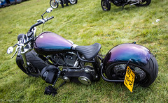 So low Choppers-Harley (Caught On Digital) Tags: bobber chopper custom harleydavidson solowchoppers stanton