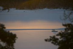 sunshine (Leifskandsen) Tags: nature sunrise norway oslofjorden bay water sea cold morning camera canon living leifskandsen skandsenimages