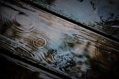 Liquid Wood (peterscott12) Tags: wood deck cedar water drops rain splash drips old outside concentric rings