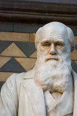 Darwin Statue - Natural History Museum London (nickstone333) Tags: naturalhistorymuseum london museum charlesdarwin darwin statue atxm100afprod tokinaaf100mmf28macro nikon nikond7100 d7100