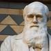 Darwin Statue - Natural History Museum London