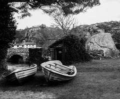 Twin boats (gddik) Tags: brynrefail northwales gwynedd mono bw blackwhite boat water bridge lake