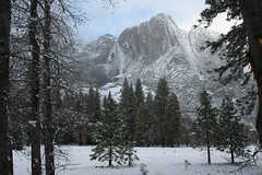 Yosemite Falls soon after snow storm, img_2015hde (Akira Murayama) Tags: yosemite yosemitenationalpark yosemitevalley ynp yosemiteinsnow yosemitefalls nature landscape waterfall mountain yosemiteconnect sundaylights