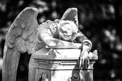 Kodachrome (Thomas Hawk) Tags: america glenwoodcemetery houston texas usa unitedstates unitedstatesofamerica angel bw cemetery sculpture fav10 fav25 fav50 fav100