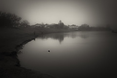 evening fishing on the misty lake (Pomo photos) Tags: evening night x100s fujifilmx100s surreal noir lake river water reflection tree trees fisherman fishing people fish sepia blackandwhite blackwhite bw monochrome mono mist misty fog landscape house grass road bird duck birds