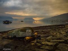 Pallanza (VB) - Ritorno autunnale (iw2ijz) Tags: olympus gx8 lumix panasonic landscape lake maggiore lago piemonte boat barca verbania pallanza