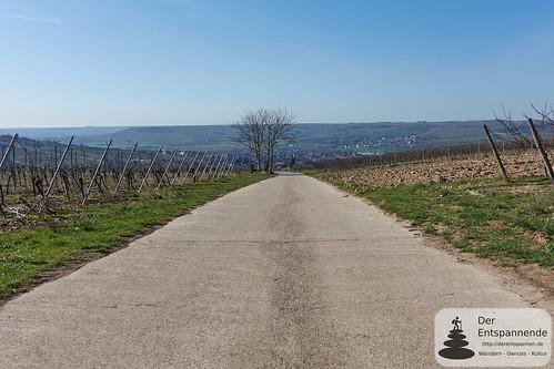 Schwabenheim im Selztal