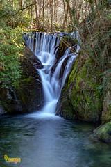 M4_28329 (3.3 mil views - Thank you all.) Tags: machynlleth wales unitedkingdom gb uk dyfifurnace staneastwood stanleyeastwood river furnace building waterwheel waterfall water wood copse