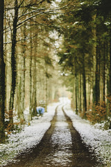 giants pathway (Marco - MB Photography) Tags: giantspathway pathintheforest enchantedforest snowypath dreamforest dreamscape
