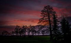 Sonnenaufgang (bc-schulte) Tags: fujifilm xt20 xf23mm sonnenaufgang landschaft landscape