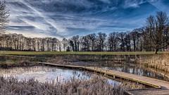 Cold Frosty Morning (jayneboo) Tags: cold frost winter attingham park pond boardwalk bullrushes landscape trees sky painted