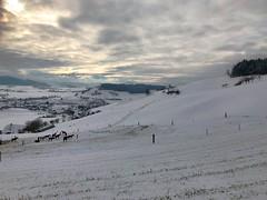 Winter 2019: Unterhalb Baldisthal Arni - Biglen (Martinus VI) Tags: winter winterlandschaft hivers schnee snow nieve neige emmental kanton canton de bern berne berna berner bernese schweiz suisse suiza switzerland svizzera swiss y190112 martinus6 martinus6xy martinus martinusvi