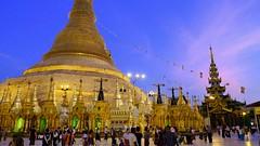 Shwedagon Pagoda (Andrzej Olszewski) Tags: yangon rangoon burma myanmar asia