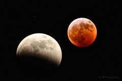 Super Blood Wolf Moon, January 20 - 21, 2019 (GSB Photography) Tags: supermoon bloodmoon wolfmoon lunareclipse longexposure astrophotography celestial nikon d7200 night moon orbit space eclipse umbra
