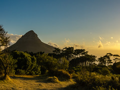 Lions Head (bransch.photography) Tags: africa landscape sunset nature landmark signalhill beauty panorama orange capetown view sun blue twilight panoramic beautiful silhouette stunning scenic southafrica sky lionshead tablemountain light outdoor mountain dusk