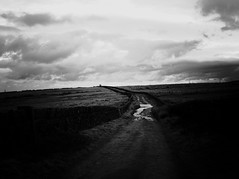 track3 (olveres) Tags: hiking legacy glass olympus omd canon fd oxenhope black white bw westyorkshire