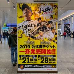 Hanshin Tigers 2019 (Hideki Iba) Tags: baseball hanshin tigers hanshintigers 94 haraguchi poster umeda osaka japan 阪神タイガース square iphone