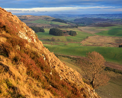 Looking east from the Crags of Lundie. (Noel Wyn Davies) Tags: cragsoflundie winter sunshine farmland tree trees hills rocks slope clouds scotland perthshire angus