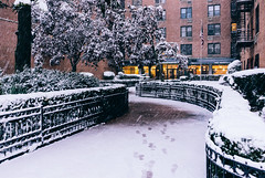 Let it snow, Winter Wonderland (RomanK Photography) Tags: brooklyn newyorkcity city snow snowstorm sonyalpha winter footprints weather