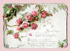 Glückwunschkarte mit Rosen und Spruch (altpapiersammler) Tags: alt old vintage glückwunschkarte greeting flower floral blume rose vers geprägt gestanzt prägung coined coinage gruskarte grus