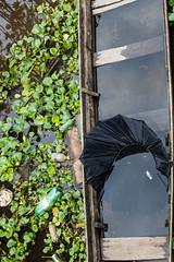 São Gabriel da Cachoeira-AM (Johnny Photofucker) Tags: sãogabrieldacachoeira am amazonas amazon amazônia lightroom canoa brasil brasile brazil aguapé decadência 24105mm lixo rifiuti trash