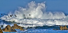 January4Image9616 (Michael T. Morales) Tags: pacificgrove waves rockformation ocean mar sea sky montereybay