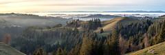 Brästenegg - Panorama (uhu's pics) Tags: schweiz switzerland suisse bern luzern emmental ahorn alp grenzweg landschaft panorama hügel baum wald bauernhof natur aussicht fernsicht nebelmeer jura draussen ruhig stimmungsvoll friedlich fujifil fuji fujinon xf35mmf2