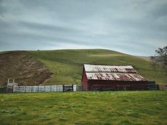 """Vanishing Icon"" (bradhodges09) Tags: california whitefences iconic greengrasses rollinghills ranch farm oldbarns redbarn barns barn"