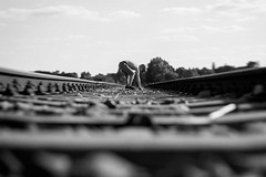 Stadtkind (NEVEZ P★) Tags: nevezphotography 50mm canon model dof berlin germany portrait fineart art childhood film rail stones kinndheit blackandwhite bnw bw sw bokeh light contrast nature summer people focus clouds tree trees