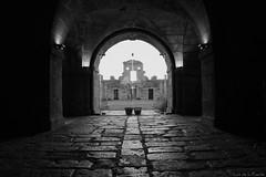 Fuerte de la concepción (Luis DLF) Tags: fuerte concepcion salamanca aldeadelobispo fortaleza frontera piedras canon 70d blancoynegro