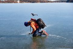 Isen undersöks (David Thyberg) Tags: långfärdsskridsko winter nature skate sweden stockholm skating 2019 ice sverige rotebro se