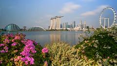 Singapore Skyline! (Tom Helleboe) Tags: happyplanet asiafavorites