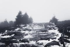 SchlechtWetterWanderung (Gruenewiese86) Tags: 2018 harz hütte november sony a6500 wald forest forestscape fog nebel angst tod tot geheimnisvoll mystisch mystical germany holz baum himmel landstrase