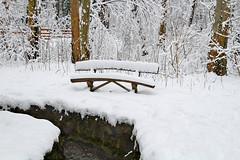 Winter (marijanafi) Tags: bench river wood walk winter snaw tree