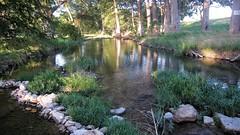 Verde Creek ~ Camp Verde, Texas (1coffeelady) Tags: streams creeks bodyofwater campverde verdecreek