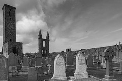 st andrews cathedral (Kris Black) Tags: st andrews castle cathedral butterfly botanic garden flower clouds black white grave sony rx100 mk3 green blue