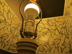 Light Patterns. (dccradio) Tags: myrtlebeach sc southcarolina horrycounty indoor indoors inside pattern design lamp lampshade lines february winter sunday evening sundayevening goodevening canon powershot elph 520hs laquinta hotel motel inn lodging lightbulb fixture lit