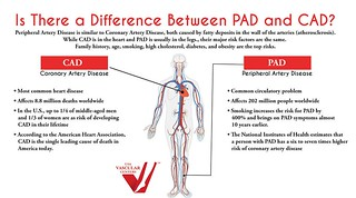 Difference Between Peripheral Artery Disease (PAD) and Coronary Heart Disease