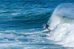 ArchitectGJA-0727.jpg (ArchitectGJA) Tags: lighthousepoint surfing californiababy hurley shaunburns wetsuit santacruz ripcurl xcel lighthousefield california beach marineanimals coast clouds cliffs streetphotography waves surfingsteamerlane oneill coastlife steamerlane montereybay