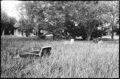 Abandoned Farm near to Bugac (Attila Pasek (Albums!)) Tags: bugacikontaktfotográfiaitábor grass analogue abandoned armchair orwo ricoh kr5 bugac camera bw farm pf2 35mm film blackandwhite